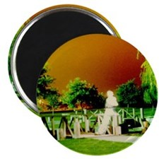 GHOST RIDERS IN THE PARK Magnet