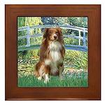 Bridge-Aussie Shep #4 Framed Tile