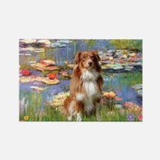 Lilies2-Aussie Shep (#4) Rectangle Magnet (10 pack