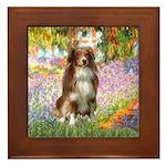 Garden-Aussie (#4) Framed Tile