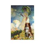 Umbrella-Aussie Shep Rectangle Magnet (10 pack)