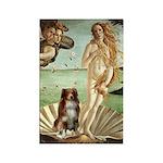 Venus-AussieShep#4 Rectangle Magnet (10 pack)