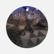 Long Haired Tabby Cat Round Ornament