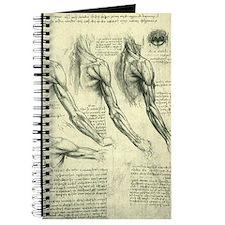 Male Anatomy by Leonardo da Vinci Journal