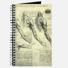 Male Anatomy by Leonardo da Vinci Journal