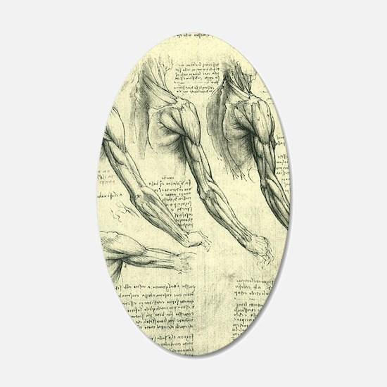 Male Anatomy by Leonardo da  Wall Decal