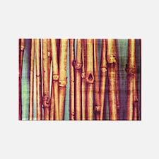 Reeds Rectangle Magnet