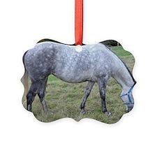 Dapple mare Ornament