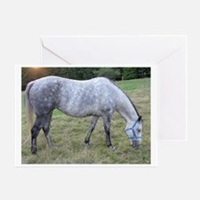 Dapple mare Greeting Card