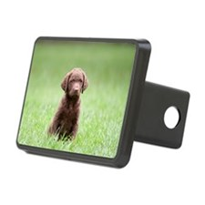 Chesapeake Bay Retriever P Hitch Cover
