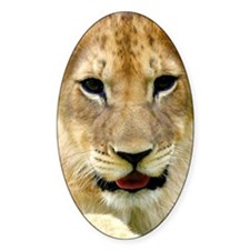 painting of lion cub Decal