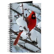 Snow Cardinal Journal