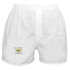 St. Croix, USVI Flag Boxer Shorts