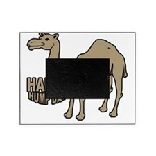 Camel  hump day Picture Frame