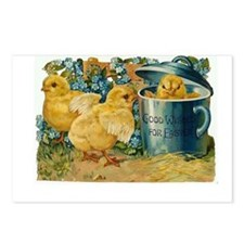Easter Chicks Postcards (Package of 8)