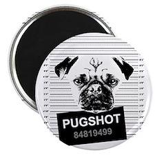 PUGHSOT DARK Magnet