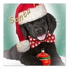 """Newfoundland puppy santa Square Car Magnet 3"""" x 3"""""""