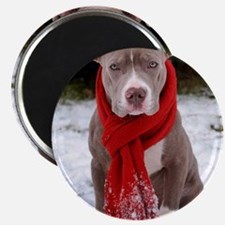 Holiday Pit Bull Magnet
