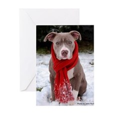 Holiday Pit Bull Greeting Card