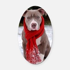 Holiday Pit Bull with Red Scarf Oval Car Magnet