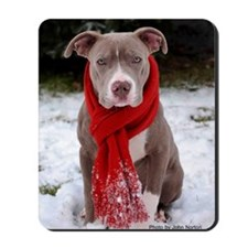 Holiday Pit Bull with Red Scarf Mousepad