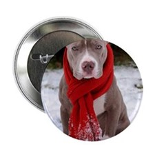 """Holiday Pit Bull with Red Scarf 2.25"""" Button"""