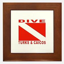 Dive Turks & Caicos Framed Tile