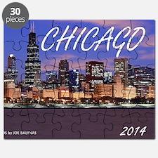 chicago 2014 Puzzle