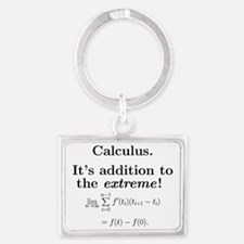 Calculus is extreme Landscape Keychain