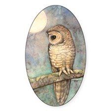 Brown Spotted Owl Watercolor Art Decal