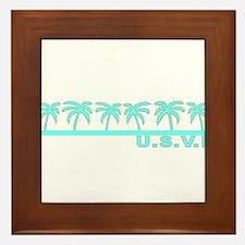 U.S.V.I. Framed Tile