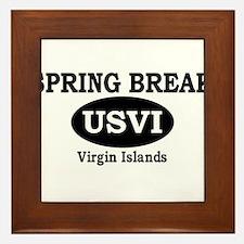 Spring Break Virgin Islands Framed Tile