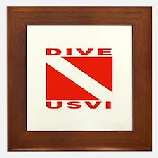 Dive U.S.V.I. Framed Tile