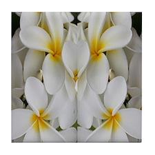 White Hawaii Plumerias Tile Coaster