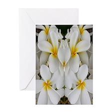 White Hawaii Plumerias Greeting Card