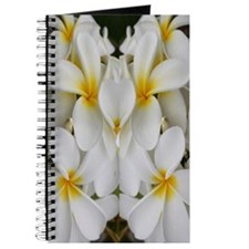 White Hawaii Plumerias Journal