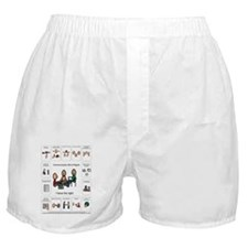 AAC Bill of rights Boxer Shorts