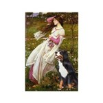 Windflowers & Bernese Rectangle Magnet (10 pack)