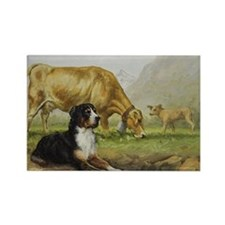 Greater Swiss Mountain Dog and Br Rectangle Magnet