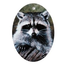 Raccoon Portrait Oval Ornament