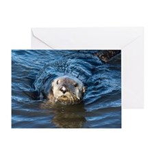 Alaska Sea Otter Greeting Card