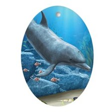 The World Of The Dolphin Oval Ornament