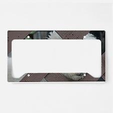bichon License Plate Holder