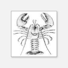 "Lobster Square Sticker 3"" x 3"""