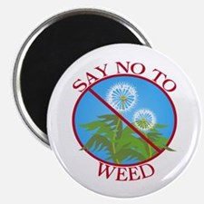 Say No To Weed Dandelion Magnet
