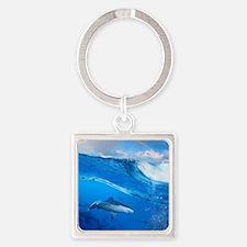 Shark Square Keychain