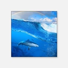 "Shark Square Sticker 3"" x 3"""