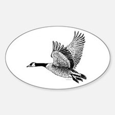 Canadian Goose Oval Decal