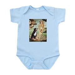 Venus and Bernese Infant Bodysuit