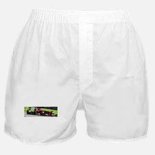 Ferrari F1 Boxer Shorts